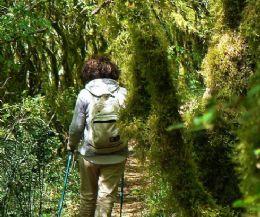 Locandina: Il paesaggio rurale-fluviale Sabino di Valle e Abbazia del Farfa