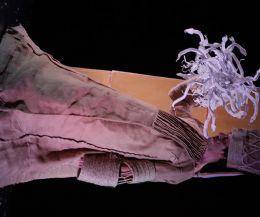 Locandina: Balletto di Sardegna in diretta streaming