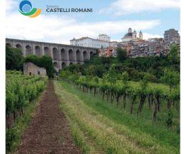 Locandina: Sistema Castelli Romani
