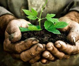 Locandina: Difendere il suolo con l'economia circolare
