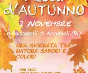 """Locandina: """"Festa d'Autunno""""  1 novembre 2014 a Roccasalli di Accumoli (Ri)"""