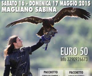 Locandina: Corso di falconeria