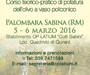 Locandina: Corso di potatura dell'olivo a Palombara Sabina (Rm)