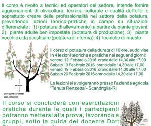 Locandina: Corso di potatura dell'olivo a Scandriglia