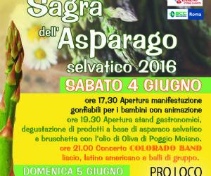 Locandina: SAGRA DELL'ASPARAGO SELVATICO