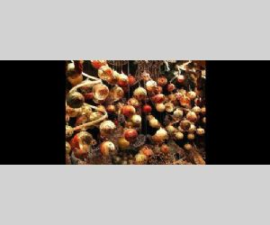 Locandina: MERCATINI DI NATALE A MONTEBUONO - II EDIZIONE
