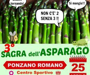 Locandina: 3° Sagra dell'asparago