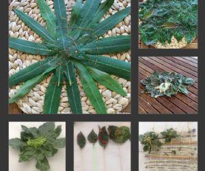 Locandina: Seams of Leaves