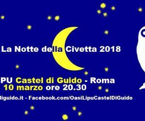 Locandina: La Notte della Civetta 2018