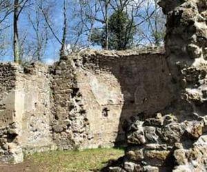 Locandina: Natura e Medioevo