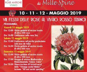 Locandina: VII Festa delle Rose