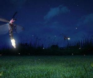 Locandina: La cascata segreta e la danza delle lucciole