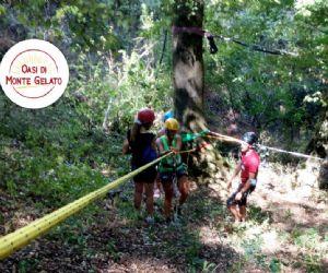 Locandina: Adventure Trail